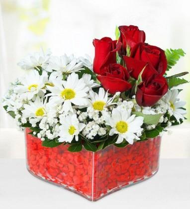 Kalpte Papatyalar ve Güller
